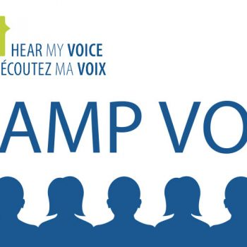 Reflections on Camp Vox: The art and science of political campaigning